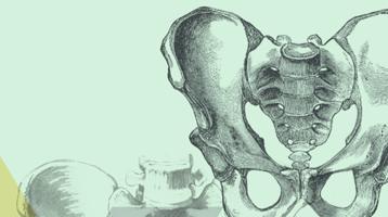 2ª edición del Titulo de Especialista en Abordaje médico del Suelo Pélvico